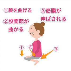 膝を曲げる動作